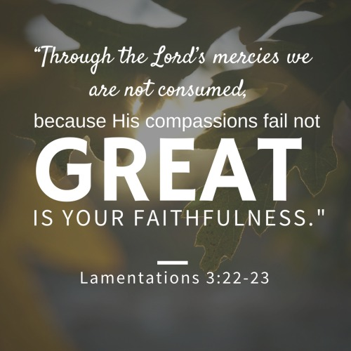 """Through the Lord's mercies we are not consumed, because His compassions fail not. They are new every morning; great is Your faithfulness."" Lamentations 3:22-23"