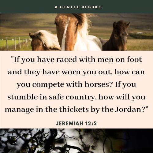 Jeremiah 12:5