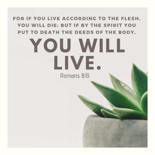 Romans 8:13